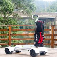 4 Wheel Golf Cart Scooter EcoRider 60V Electric 2000w With Removable Handle