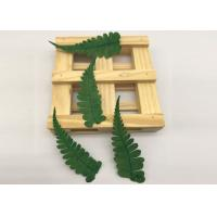 China Mixed Several Leaf Real Pressed Flowers , Dried Green FlowersFor Christmas Card Gifts on sale