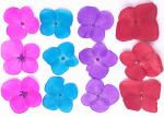 Hydrangea Mixed Color Dried Flower Crafts Petal For Christmas Gifts / Card Decoration