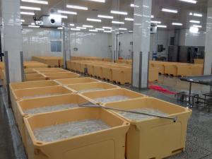300L ice box fish box plastic container styrofoam fish ice boxes