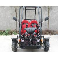 SAMLL 110cc Go Kart Buggy / Adult Off Road Go Kart With Double Adjustable Seat