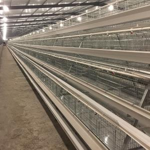 China Automatic Egg Collection Equipment 3tier 4 tier A Type Poultry Farm Layer Cage on sale
