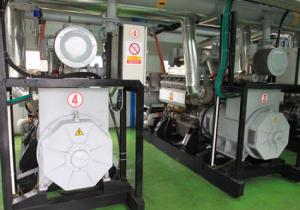 China Biomass Gasification System on sale