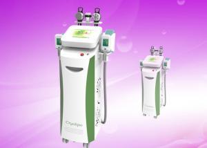 China 2014 New design cryolipolysis lipo freezeing slimming machine on sale