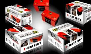 China Motorcycle Lithium Battery WEX5L14-MF UNIVERSAL USE: 12N11-3A-1/12N11-3B/YB12AL-A2 on sale