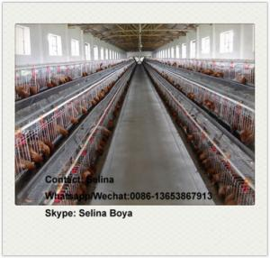 China Poultry layer battery chicken cage for Nigeria Kenya South Africa Tanzania Uganda farm on sale