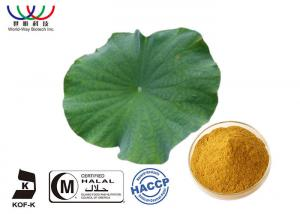 China Dried Lotus Leaf Weight Loss , Chinese Quality Herbal Extracts Fat - Burner Flavonoids on sale