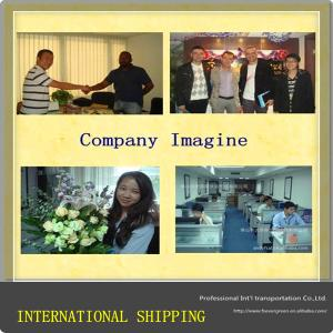 China china shipping agent,china to Africa shipping service on sale