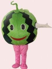 Quality handmade lovely watermelon mascot cartoon cosplay fruit costumes for kids and adults for sale