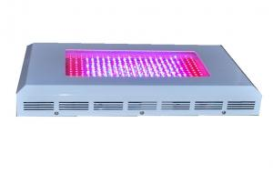 China 300w Indoor LED Grow Lights 380nm - 800nm Red Blue Orange CE ROHS on sale