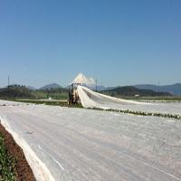 15-100Gsm White Agriculture Ground Cover ,Black 1-3% UV Pp Spunbond NonWoven Fabric