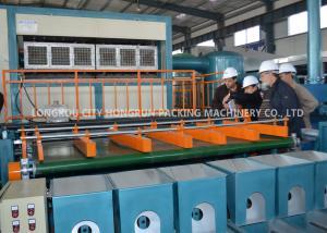 China Automatic Pulp Egg Tray Moulding Machine Egg Carton Making Machine on sale