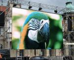 Full Color Led Video Wall Rental Outdoor Aluminum Cabinet High Brightness