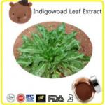 Indigowoad Leaf Extract natural colorant
