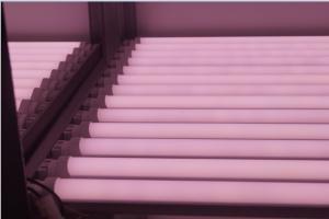 China T8 LED Tube Light Pink Color/LED Bulb Lamp/Shop Tube Lighting/Supermarket LED Tube 12w on sale
