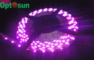 China Single Color Flexible 30leds 5050 SMD Led Strip Light with 120° Beam Angle for Window Display on sale