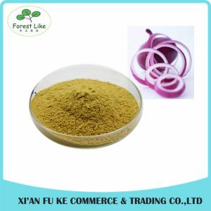 China Factory Price Natural Vegetable Dried Onion Extract Powder on sale