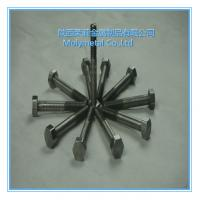 very beautiful molybdenum nuts Mo bolts/nuts and screwsM2,M8,m10,m4,m5 etc good price