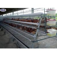 Zinc Plating Chicken Breeding Cages 304 Stainless Steel Ball Long Time Use