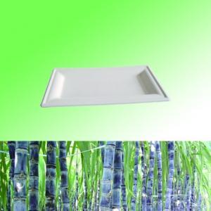 100% Sugarcane Bagasse pulp biodegradable disposable 6\ *10\  rectangle plate & 100% Sugarcane Bagasse pulp biodegradable disposable 6\