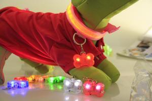 China PET LED flashing collar necklace Buckle Safety Night Light bone dog ID tag Pendant on sale