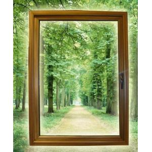 China LM55C Alu-wood Outward Window,1800 mm (width) x 1800 mm (height) with an aluminium consumption of 5.02kg/㎡。 on sale