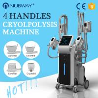 China 4 handles coolsculpting cryolipolysis fat freezing slimming system 4 handles work at the same time on sale