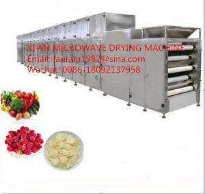 China Fresh Fruit Drying Machine Vegetable Dryer Machine on sale