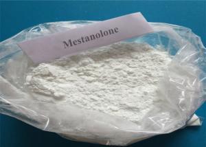 China 99% Mestanolone 521-11-9 Mestaline Natural Male Enhancement White Powder 100% Pass on sale
