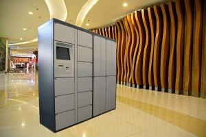 China Electronic Laundry Locker With Hanger And Remote Platform For Indoor Public Place on sale