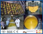 Mango Pulp Processing Machinery Mango Processing Line With Aseptic Package Machine