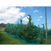 Warp Knitted Covering Fruit Tree Insect Screen Mesh Bag Protection Netting