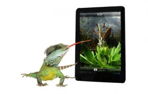 China Multi-language 9.7 Inch Android Tablet PC With Windows 7, 1G DDR3 RAM, 5200mAh Battery on sale