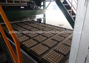 China 220V Automatic Egg Tray Machine With Multi - Layer Dryer Capacity 5000pcs / H on sale