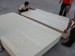 Quality Poplar core 18mm plywood for furniture for sale