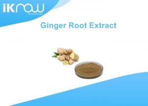 China Organic Dried Powdered Herbal Extracts Black Ginger Root Extract Powder Gingerols on sale