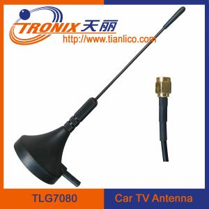 China 1 section mast car am fm radio antennaTLG7080 on sale