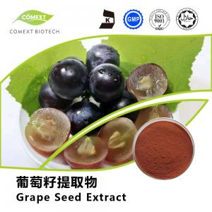 China Hot Sale Grape Seed Extract 95% OPC Red Brown Powder UV Testing on sale