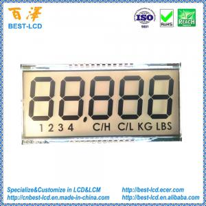 China Customized 5 digits 7 segment TN LCD display with white LED backlight For Electronic Baby Scale on sale