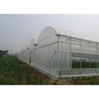 Larger Insect Mesh Netting Agricultural Covering Material 100-150m/ Roll
