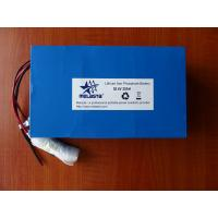 China 36V 20Ah Lithium Iron phosphate battery pack (LFP7365132-12S4P, 38.4V 768Wh) on sale