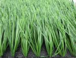 China 55mm Height Sports Field Football Artificial Grass with FIFA 2 Star certification. wholesale