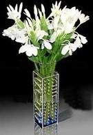 China Acrylic Flower Display/ Acrylic Flower Holder/ Acrylic Flower Stand on sale