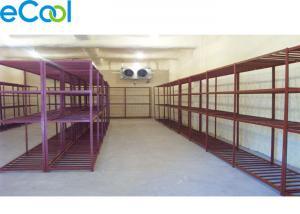 China Steel Structure Commercial Freezer Storage / Bitzer Compressor Cold Meat Storage on sale