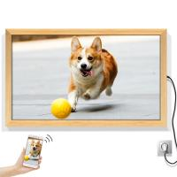 China Voice Recording 80W 49 3840*2160 LCD digital photo frame on sale