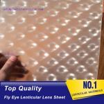 PLASTIC LENTICULAR micro lens sheet 0.5mm 3d fly's eye lens array sheet austria