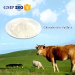 USP Standard Joint Ease 90%Glucosamine Chondroitin Sulphate From Bovine Cartilages