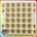 Bandejas disponibles del huevo del papel de 30 paquetes