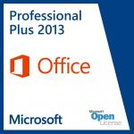 Professional Plus Office 2013 Key Code PC License One User Digital Delivery