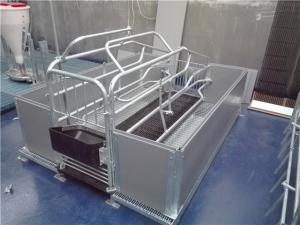 China Pvc Board Steel Pig Pen , Sow Farrowing Crate With Flooring 2.2m*1.0m*0.6m Size on sale